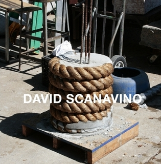 David Scanavino, Socrates Sculpture Park